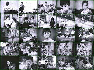 Ngọn Đèn Trong Mơ. 1987.