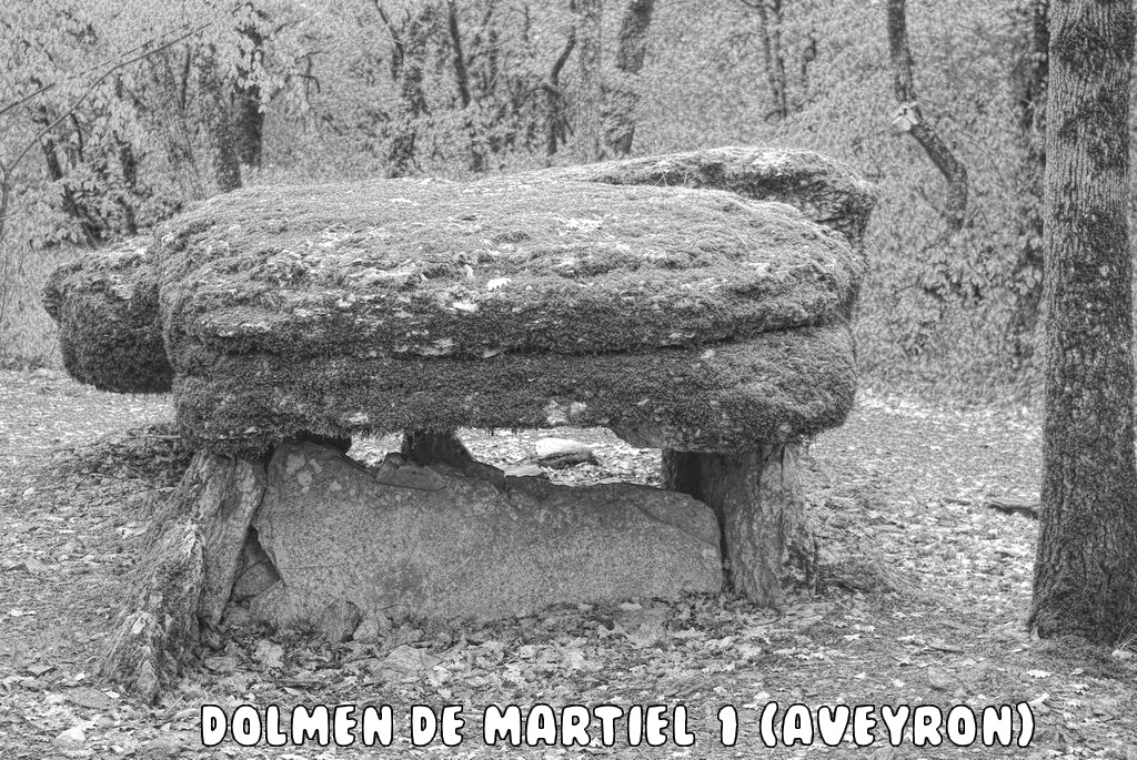 DOLMEN DE MARTIEL 1 (AVEYRON)