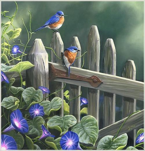 """""""La noce des oiseaux""""  poème de Jean-Claude Brinette"""