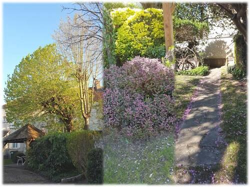 Le jardin au 30 ème jour