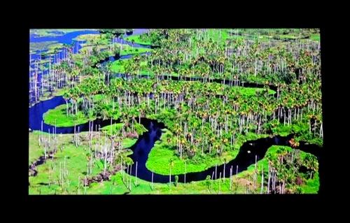 """""""Nature du monde vue du ciel"""" et """"Châtillonnais vu du ciel"""" , deux très beaux audiovisuels, projetés au Select de Châtillon sur Seine, par Jean Ponsignon"""