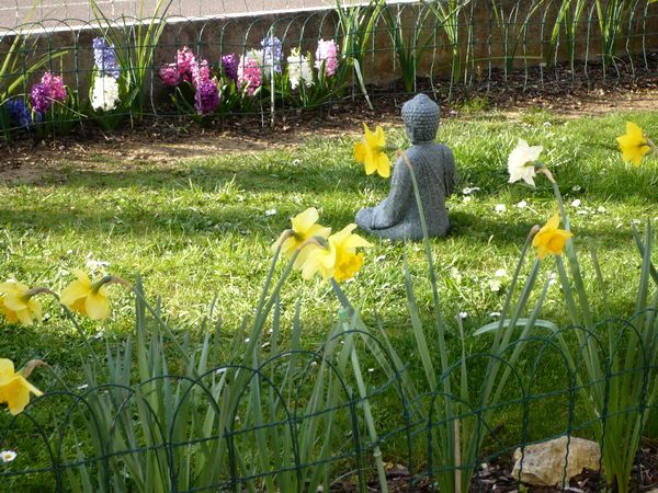 Bouddha-au-jardin-29mars14.jpg