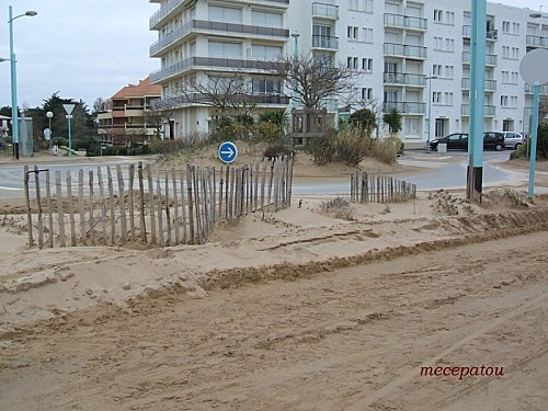 sable-stj-de-mont.jpg