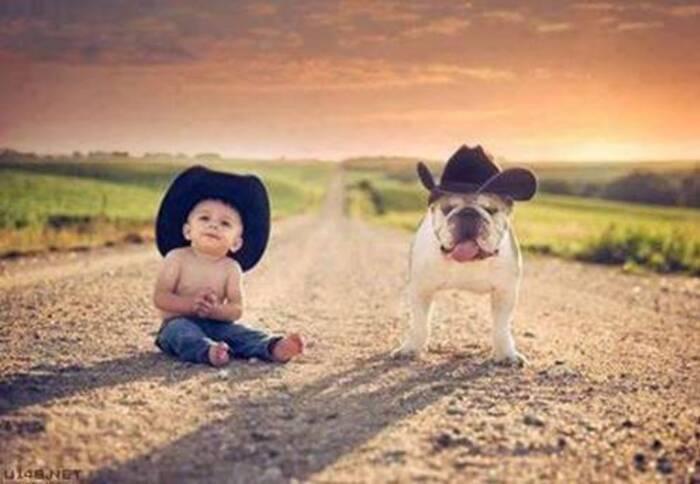 Les chiens qui protègent les enfants. (Série 4 de 4)