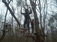 Acrobaties dans les arbres !!