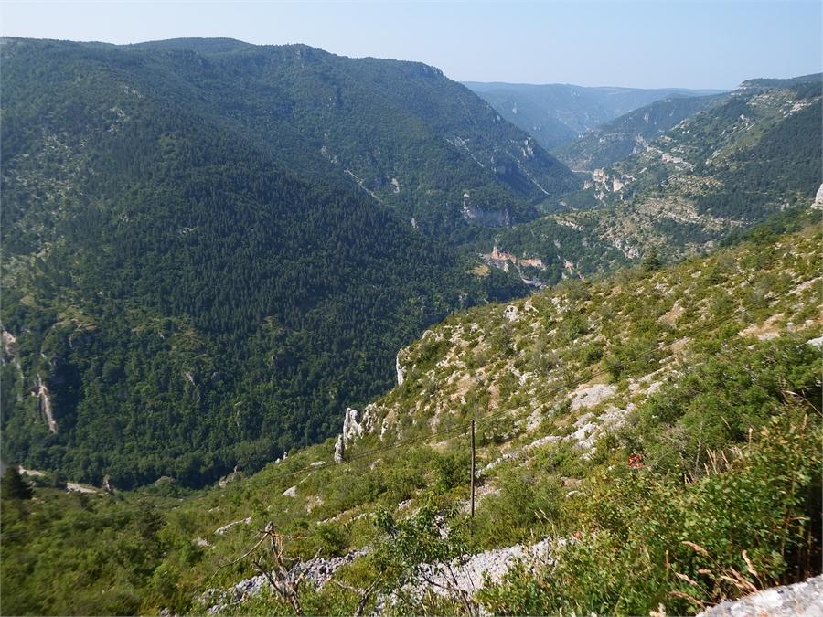 Les Gorges du Tarn par St Eminie