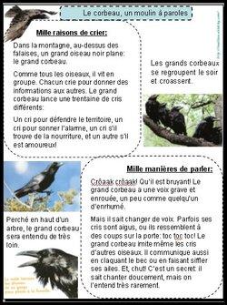 PERIODE 2: les animaux de la forêt