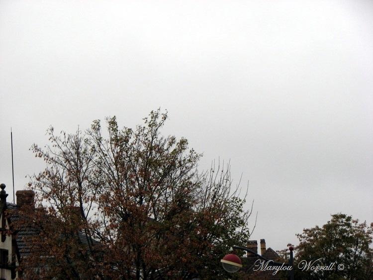Ciel d'Alsace 387