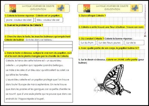 Littérature: La folle journée de Céleste (papillon)