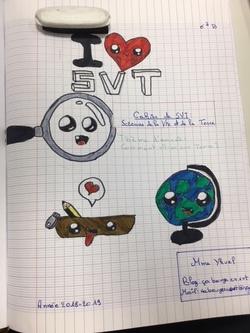 Les 6èmes dessinent les SVT !