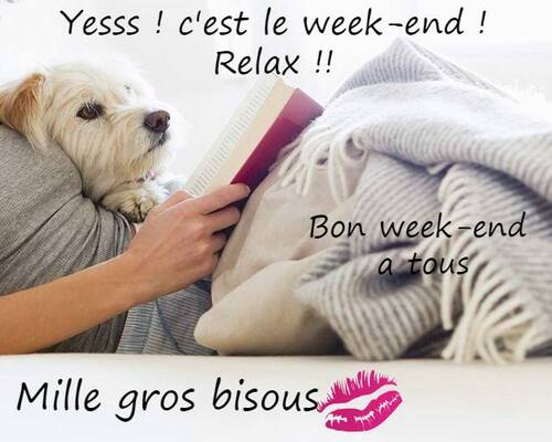 voilà  le week-end qui arrive ....