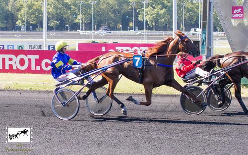 Prix Jockey