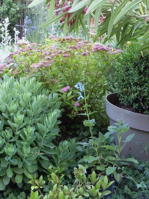 Notre  Jardin : 8ans