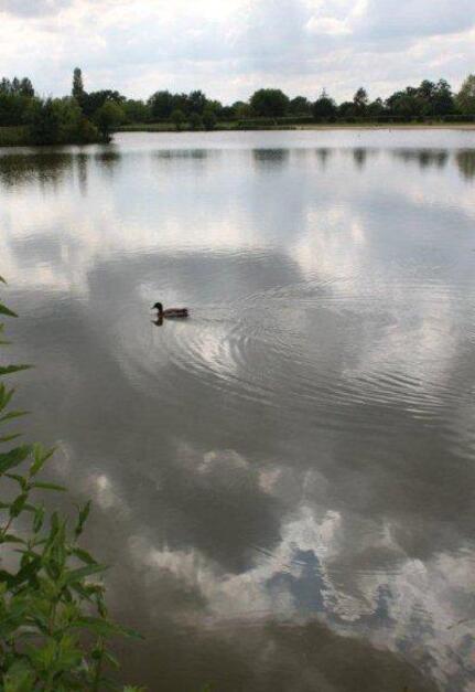 Au lac de St Denis du Maine (16)