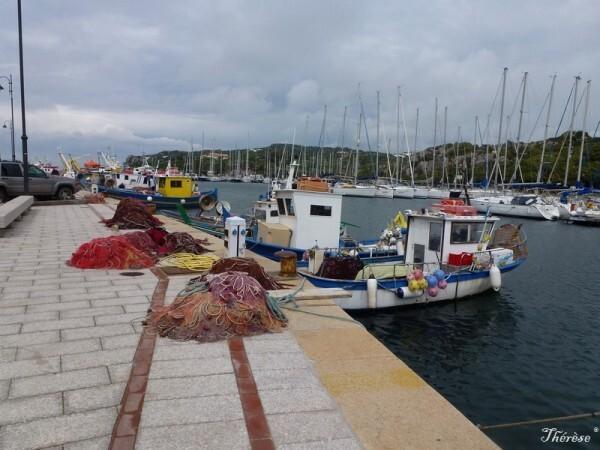 Santa Teresa, le port (12)