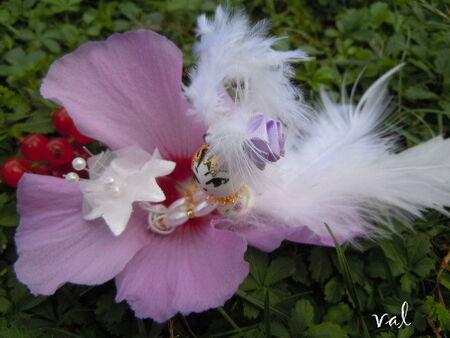 f_e_des_fleurs