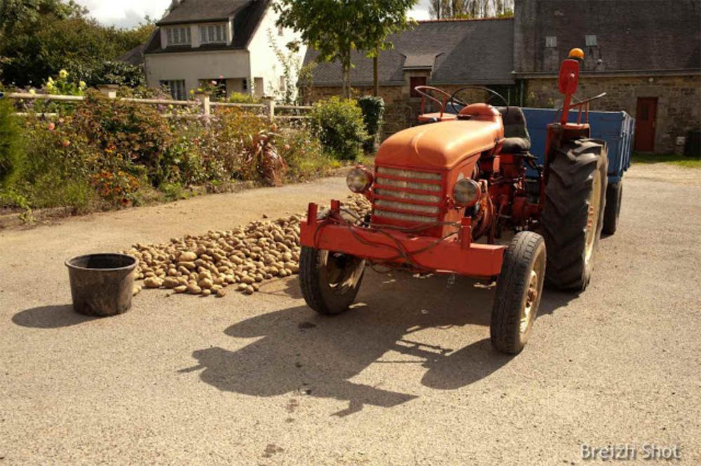 lanvaudan - vieux tracteur - pommes-de-terre