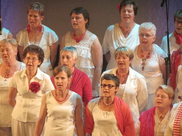 """Le magnifique concert 2014 des """"Sans Voix"""""""