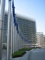 EUROPE ET  OGM : UN EXEMPLE DE DECISION ANTI DEMOCRATIQUE
