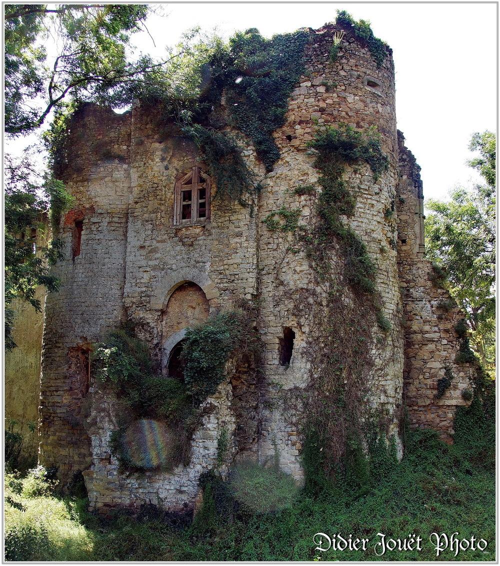 (85) Les Essarts (3) - Château Renaissance... en ruines