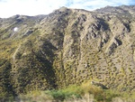 Dunedin - Queenstown - Mount Cook