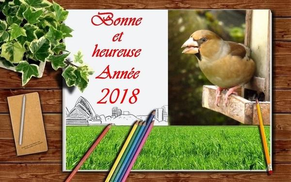 Bonne et heureuse année 2018 à toutes et à tous....