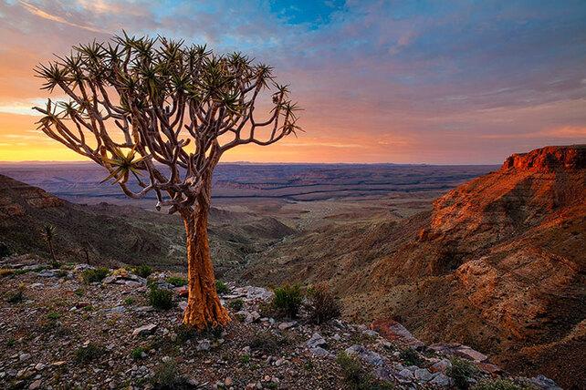admirez-le-magnifique-desert-de-namibie-grace-a-ces-fantastiques-photographies31