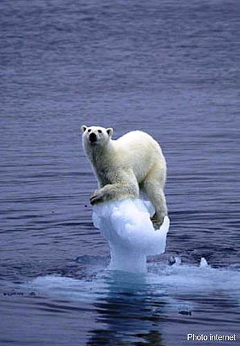 La-fonte-des-glaces.jpg