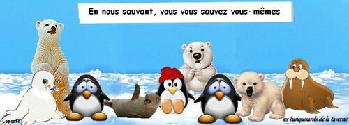 Aux animaux de Jacques Reda