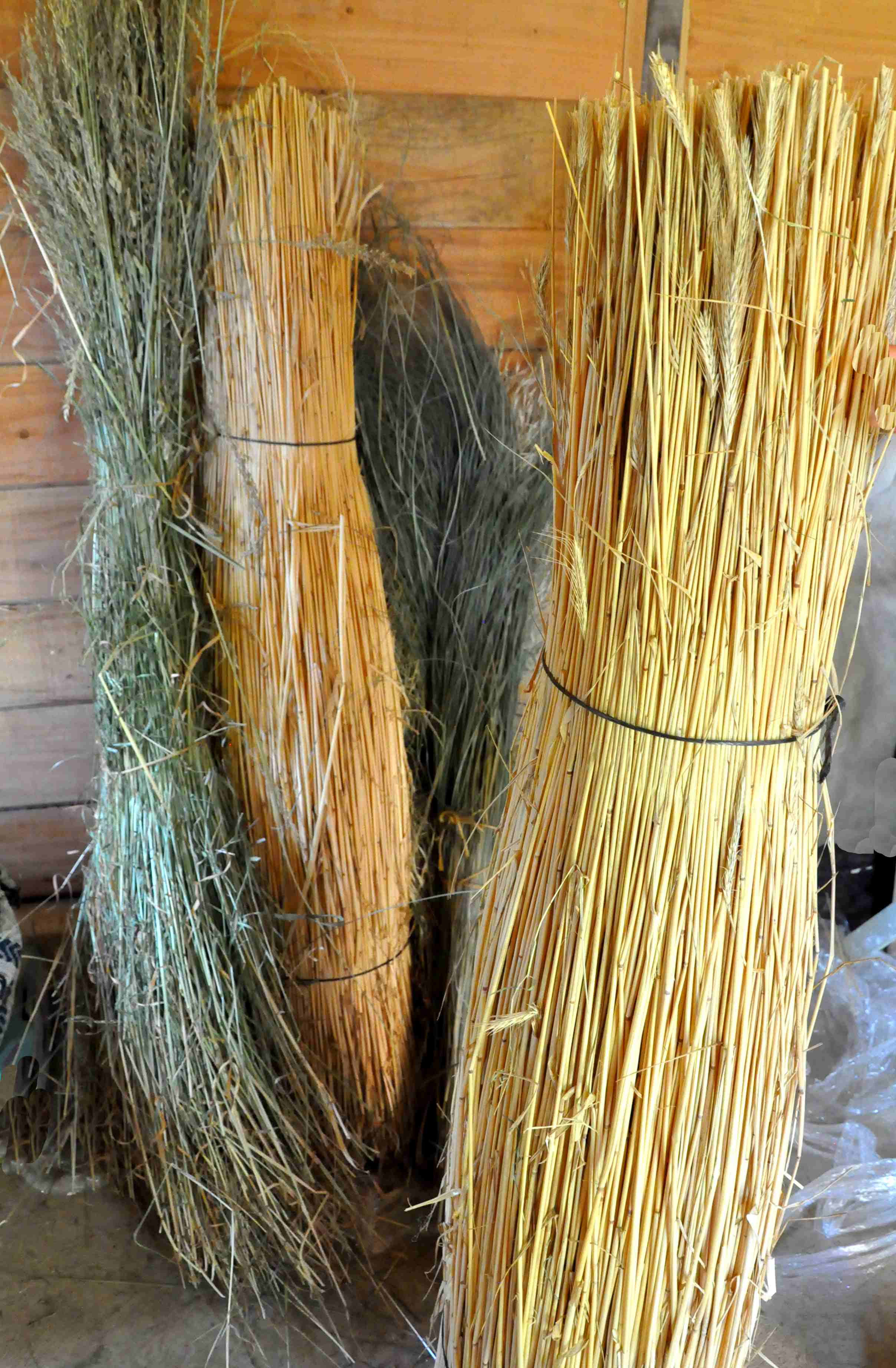 vannerie sauvage : pailles et herbes