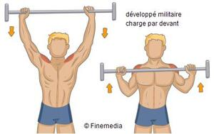 Les exercices de base de musculation