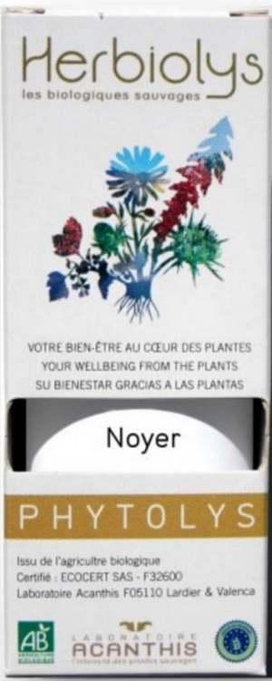 Vertus médicinales des légumes et des fruits : NOYER