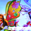 musa et flora believix