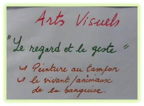 Arts visuels, Nayak le phoque des Petits Malins