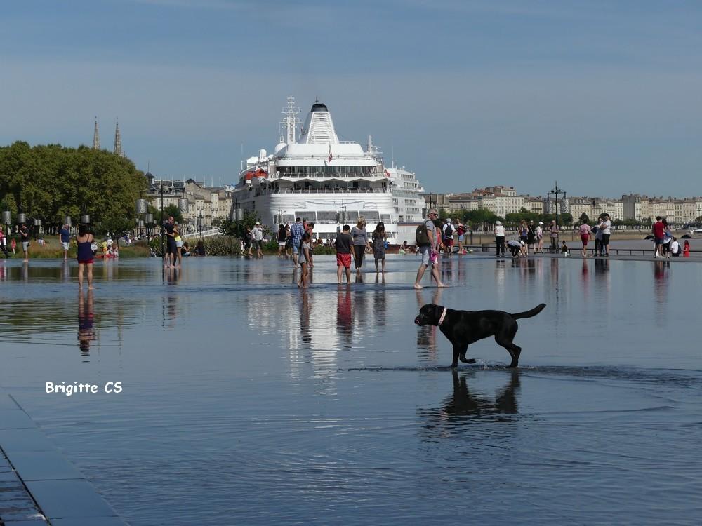 Le miroir d'eau à Bordeaux - été 2016