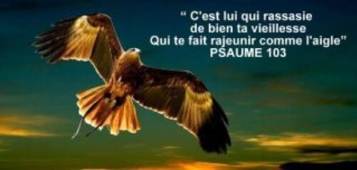 Images Psaumes 3
