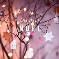 Joyeux Noël!♥