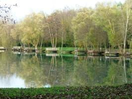 pontons étang1 - P1150990