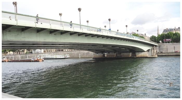 Pont de l'Alma. Paris