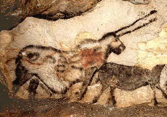 La préhistoire : le paléolithique