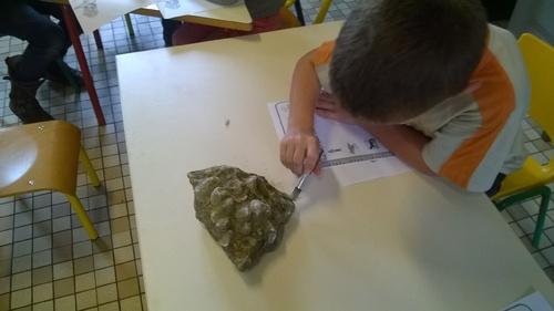 * Ateliers paléontologie / archéologie *