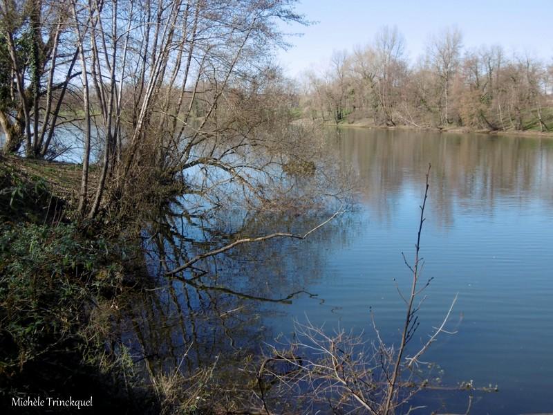 Une balade au Lac d'ORTHEZ (64), le 20 février (suite)....