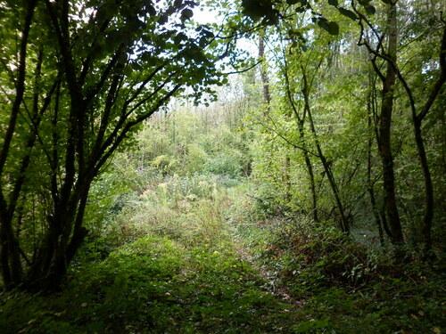 La Meilleraie-Tillay, Montournais, lieux de massacres (3)....