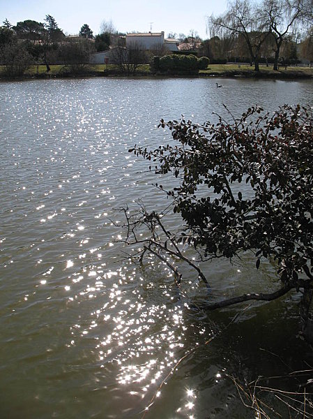 lac de la métairie 5