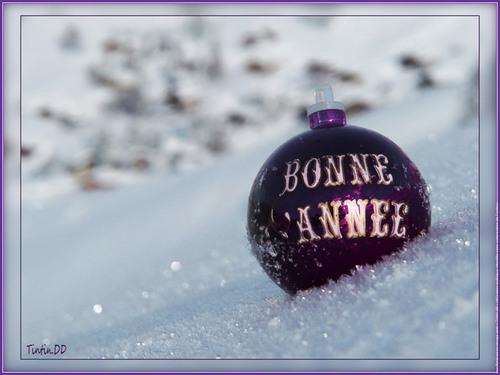 BONNE  ANNEE