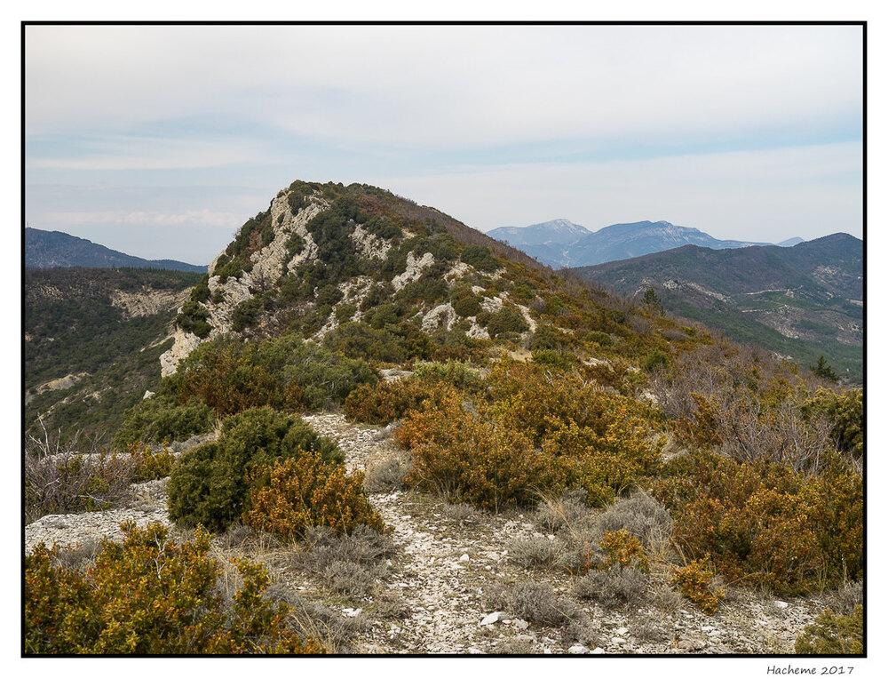 Montagne de la Baume Noire