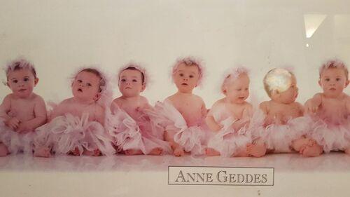 Bébés de Anne Geddes (1)