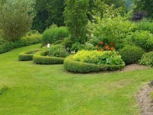 Jardin de Jean Nickell juin 2010 023