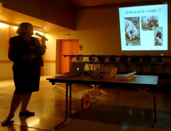 Le congrès National de Mycologie s'est poursuivi par des recherches et des conférences ouvertes au public...