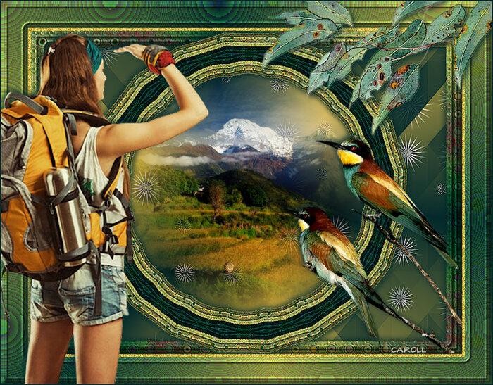 Vos versions - Nature Trip